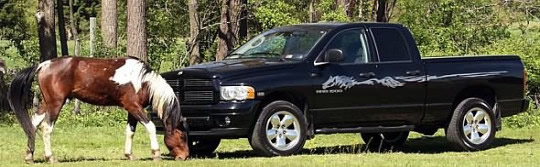 Black truck with Racer Smoke Stripe